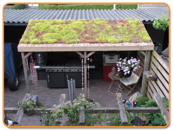 Nu groendak met subsidie in Leeuwarden | De Vakman Henk Bruining